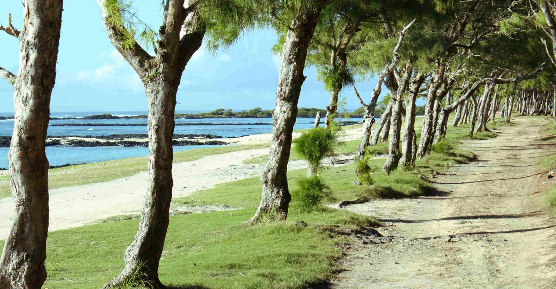 East coast of Mauritius